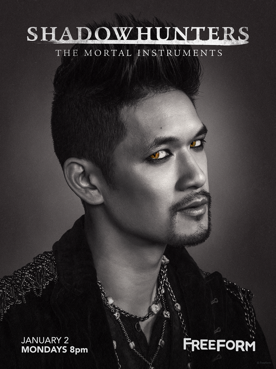 Shadowhunters - Unlock The Official Magnus Poster For Season 2 By Tweeting Us With This Hashtag! - 1002